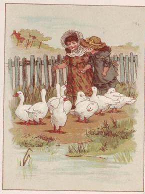 Goosey Gander1