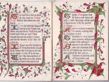 song of solomon 2