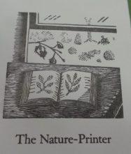 nature-printer6
